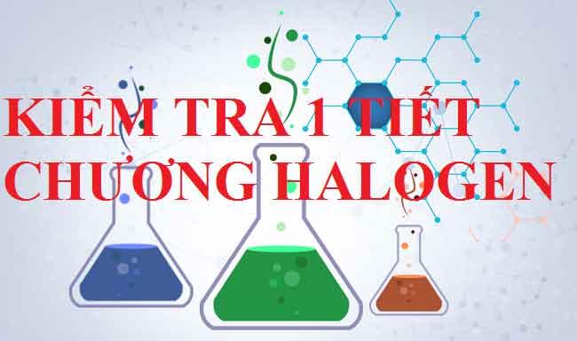 kiểm tra halogen