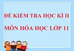 de-kiem-tra-hoc-ki-II-lop-11-mon-hoa-hoc