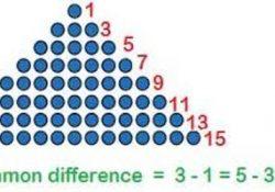 lý thuyết bài tập cấp số cộng cấp số nhân