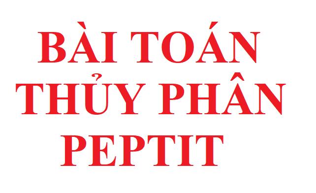 Bài toán thủy phân peptit