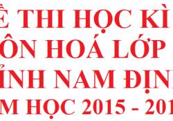 Đề thi học kì 2 lớp 10 môn hoá tỉnh Nam Định