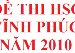 Đề thi HSG Vĩnh Phúc môn hoá học năm 2010