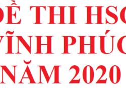 Đề thi HSG Vĩnh Phúc môn hoá học năm 2020