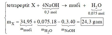 Khi thủy phân hoàn toàn một tetrapeptit X mạch hở chỉ thu được amino axit chứa 1 nhóm NH2 và 1 nhóm COOH