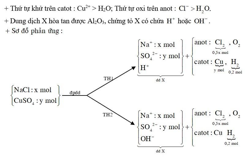 Cho m gam hỗn hợp CuSO4 và NaCl vào nước thu được dung dịch X. Điện phân X với điện cực trơ, màng ngăn xốp