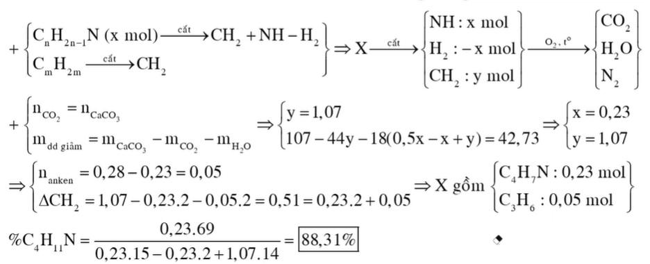 Hỗn hợp X chứa một amin đơn chức, mạch hở (có hai liên kết đôi C=C trong phân tử) và một anken
