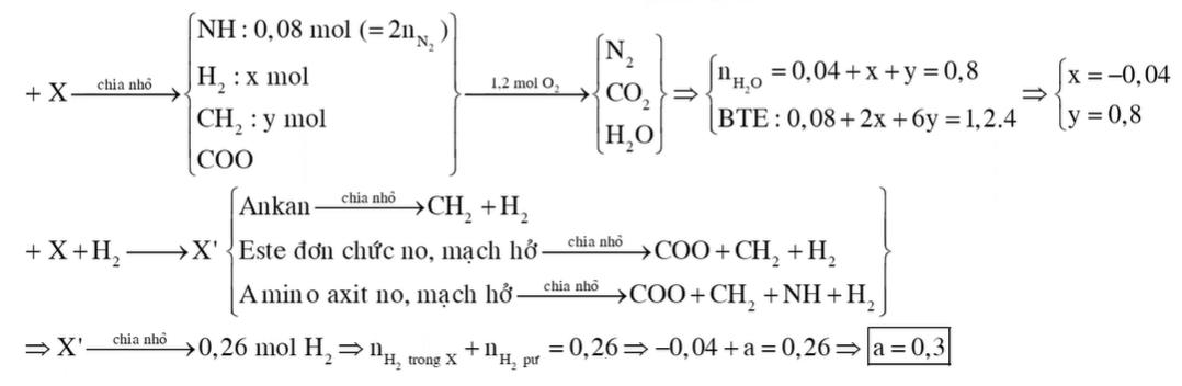 Hỗn hợp X chứa một số este đơn chức, một số amino axit và một số hiđrocacbon (đều mạch hở)