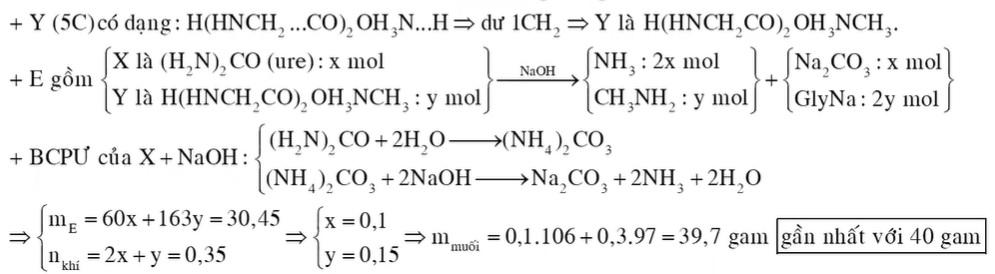 Chất X (CH4ON2, một số tiểu thương sử dụng chất này để ướp cá và hải sản, việc làm này tiềm ẩn rất nhiều nguy cơ gây hại cho sức khỏe