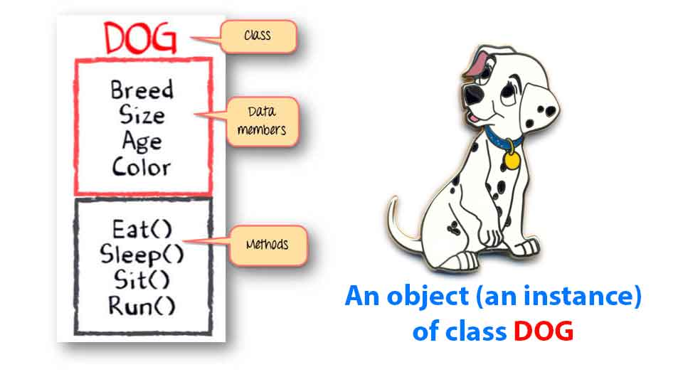 what is class in dart flutter