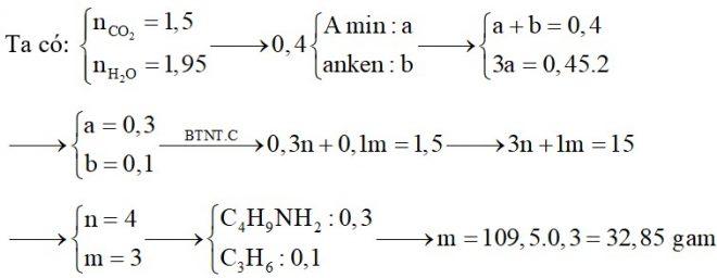 Hỗn hợp X chứa một amin no đơn chức, mạch hở và một anken. Đốt cháy hoàn toàn 0,4 mol hỗn hợp X, sản phẩm cháy thu được có 33,6 lít CO2