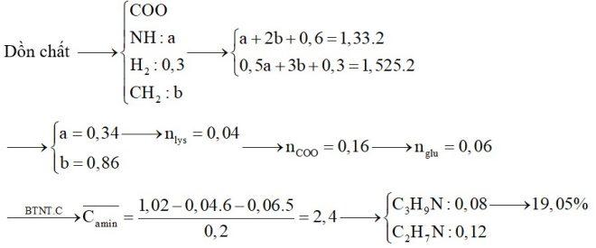 Hỗn hợp X chứa hai amin kế tiếp thuộc dãy đồng đẳng của metylamin. Hỗn hợp Y chứa axit glutamic và lysin. Đốt cháy hoàn toàn 0,3 mol hỗn hợp Z
