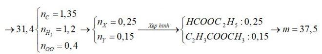 X là este no, đơn chức; Y là este đơn chức, không no chứa một liên kết đôi C=C (X, Y đều mạch hở)