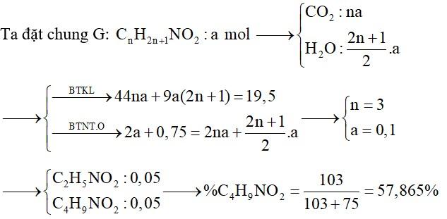 Đốt cháy hoàn toàn m gam hỗn hợp G gồm 2 amino axit: no, mạch hở, hơn kém nhau 2 nguyên tử C (1 –NH2; 1 –COOH) bằng 8,4 lít O2