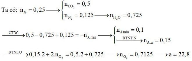 Hỗn hợp X chứa một amin no, đơn chức, mạch hở và một aminoaxit no, mạch hở có một nhóm NH2 và một nhóm COOH. Đốt cháy hoàn toàn 0,25 mol X