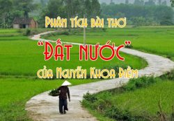 Bộ đề thi Văn tác phẩm Đất Nước Nguyễn Khoa Điềm